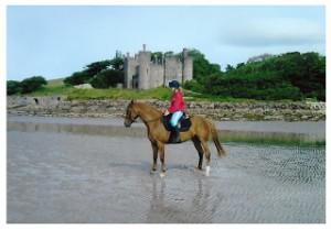 Photo chateau Irlande