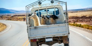 Sur-la-route-du-Pérou