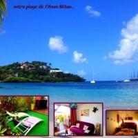 Découvrez la Martinique autrement: