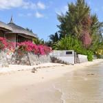 Voyage dans un pays tropical : à la découverte de Maurice