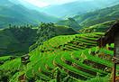 Retour au Vietnam, un pays que nous découvrions en 2013 et que nous avions apprécié