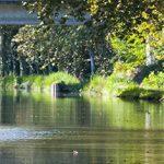 Le Tarn-et-Garonne est la destination idéale pour les amoureux de la nature et de vacances «slow tourisme».