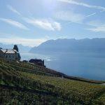 Loger chez l'habitant à Lausanne : une expérience à vivre en famille