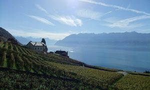 Loger chez l'habitant à Lausanne 2