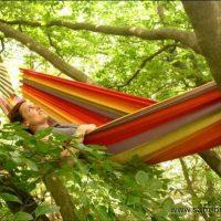 Sam'Branche propose depuis 2009 des aventures incroyables dans les arbres