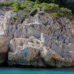 Des vacances dans les calanques de Cassis, le bon plan des vacances d'été
