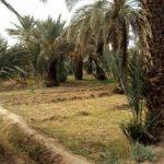 Excursion de quelques jours en quad dans le désert de Merzouga