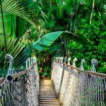 Visiter Thaïlande : une destination idéale pour les prochaines vacances