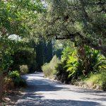 Des vacances pour découvrir la Provence